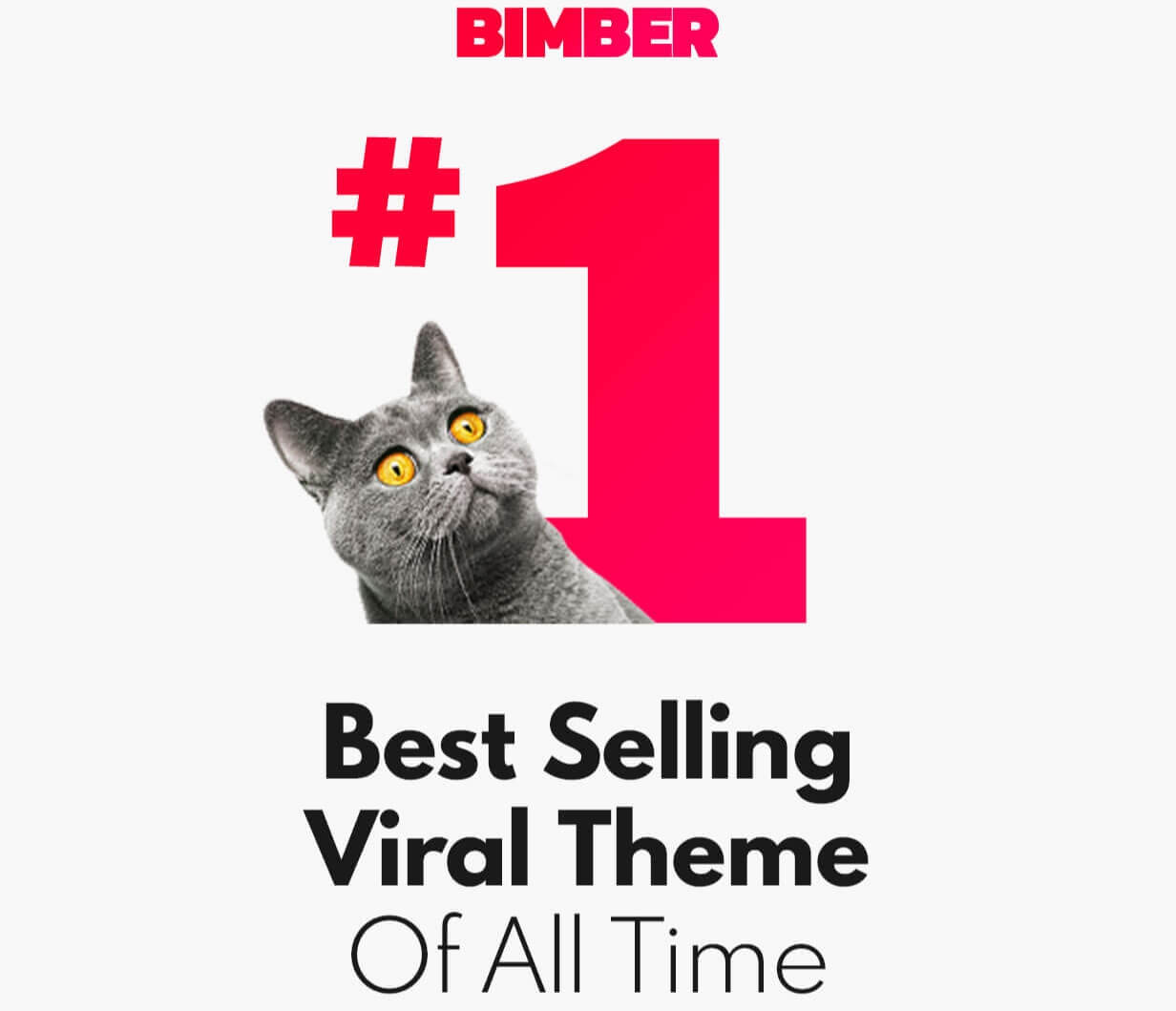 Best selling wordpress number theme download